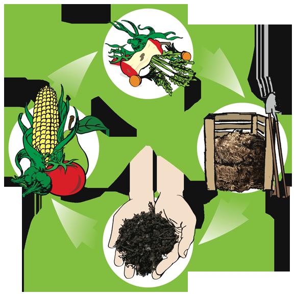 Planting clipart rich soil. Transform trash into compost