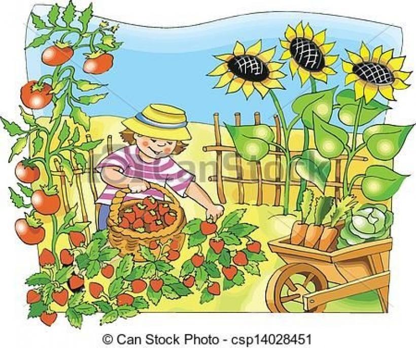 Vegetable clip art google. Garden clipart