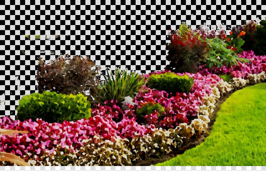 Flower plant transparent . Garden clipart botanical garden