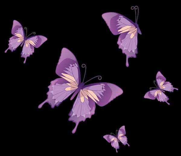 Gardening clipart insect garden. Butterflies vector png butterfly