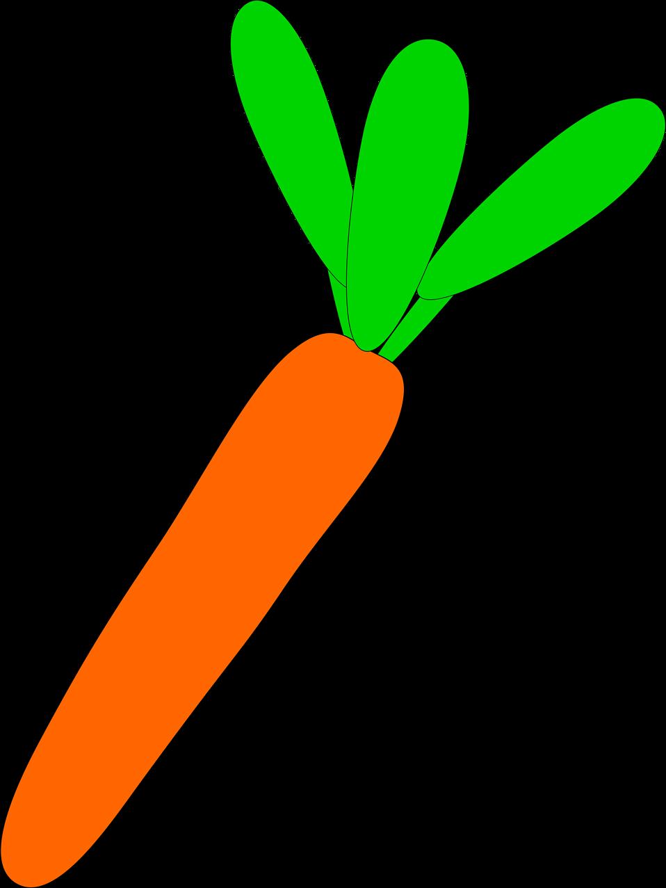 Transparent background jokingart com. Garden clipart carrot