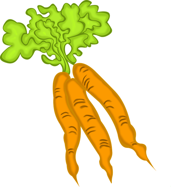 Garden clipart carrot. Val s bc reads