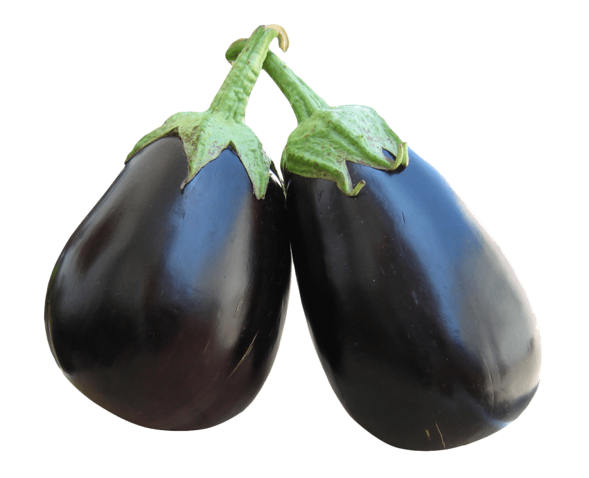 Png free images toppng. Garden clipart eggplant