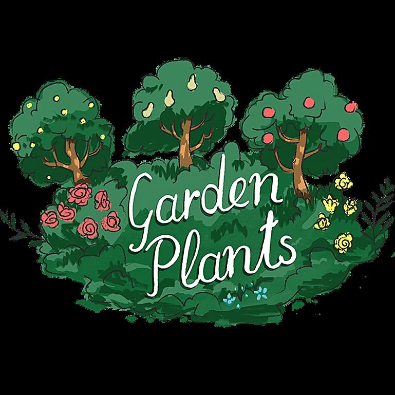 Explore our products . Garden clipart garden centre
