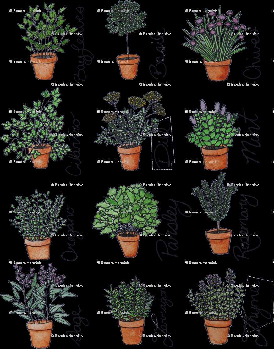 Garden clipart herb garden. Teracotta wallpaper ottdesigns spoonflower