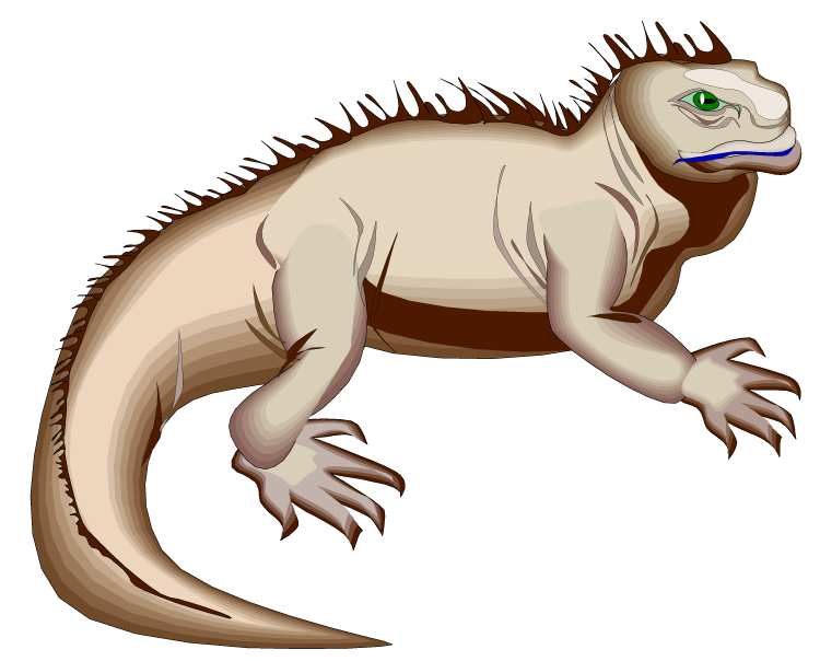 Lizard clipart water dragon. Free iguana