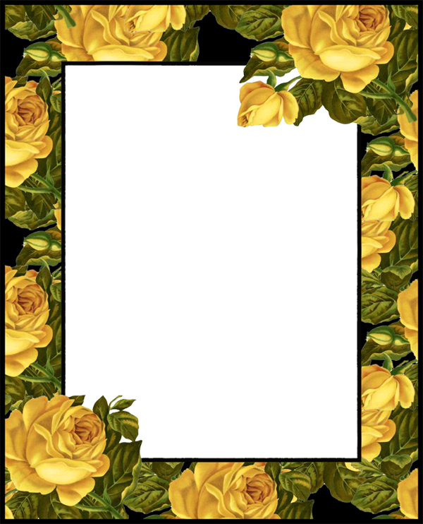 Transparent png photo frame. Garden clipart rectangle