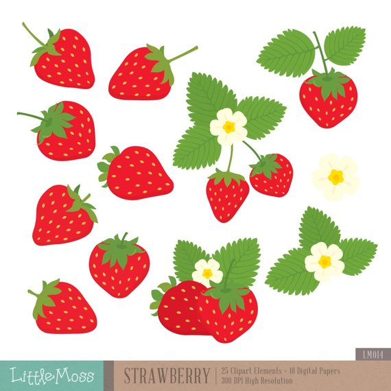 Strawberry and papers jam. Strawberries clipart digital