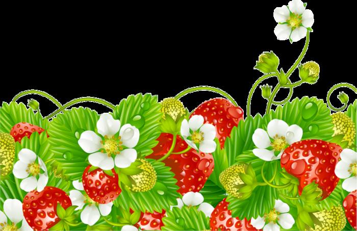. Strawberries clipart garden