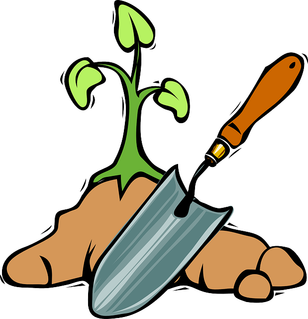 Community garden the right. Gardening clipart transparent
