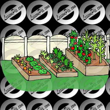 Gardener clipart vegetable patch. Garden picture for classroom