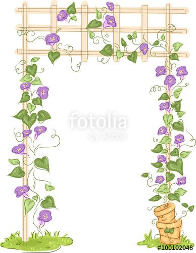 Trellis floral stock image. Vines clipart garden