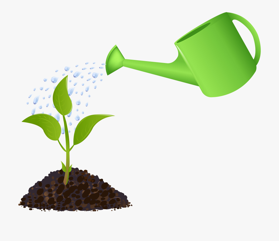 Pouring on plant . Gardening clipart water garden