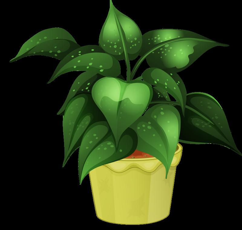 Flower pot png garden. Plants clipart house plant