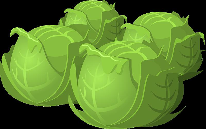 Cabbage jedyneczka pinterest and. Gardener clipart jardinero