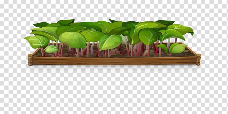 Plant flowerpot greenery transparent. Gardener clipart nursery garden