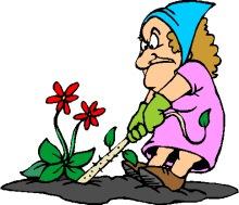 Lady gardening thegreentrianglenw . Gardener clipart old gardener