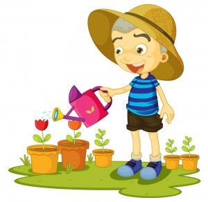 Gardener clipart proper care plant. How to take of