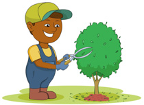 Free clip art pictures. Gardening clipart