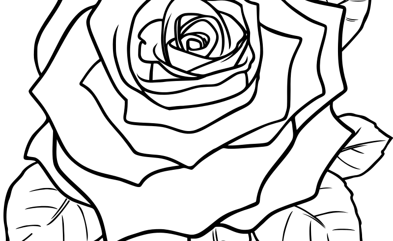 Flower rose drawing at. Gardening clipart black and white