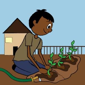 Ethnic teenage planting a. Gardening clipart boy