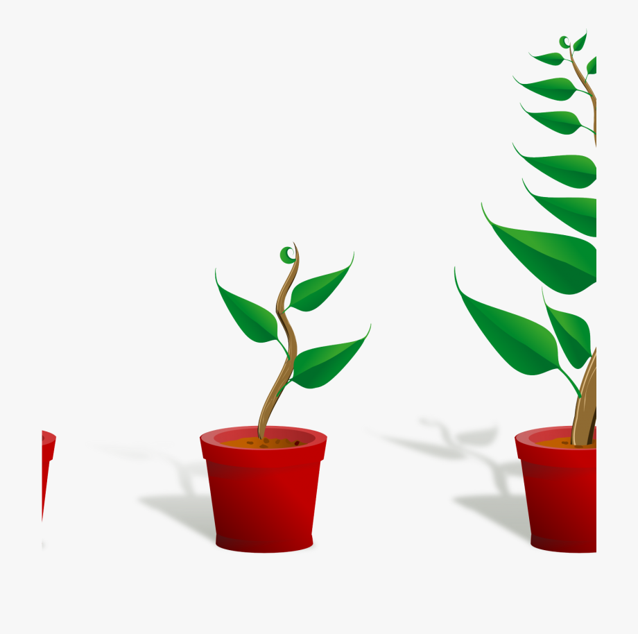 Gardening clipart plant care. Flower growing pxpng cute