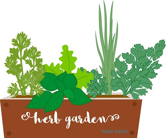Gardening clipart plant garden. Free clip art pictures