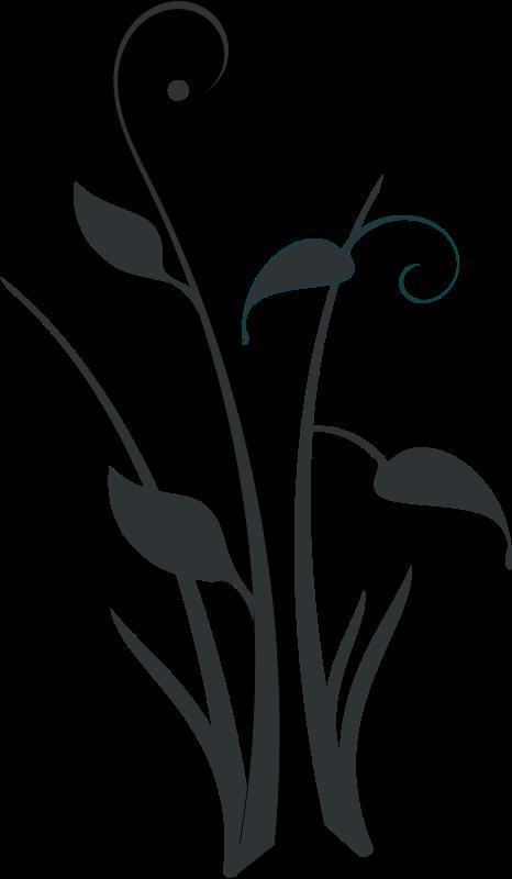 Gardening clipart plant propagation. Free decorative form rg