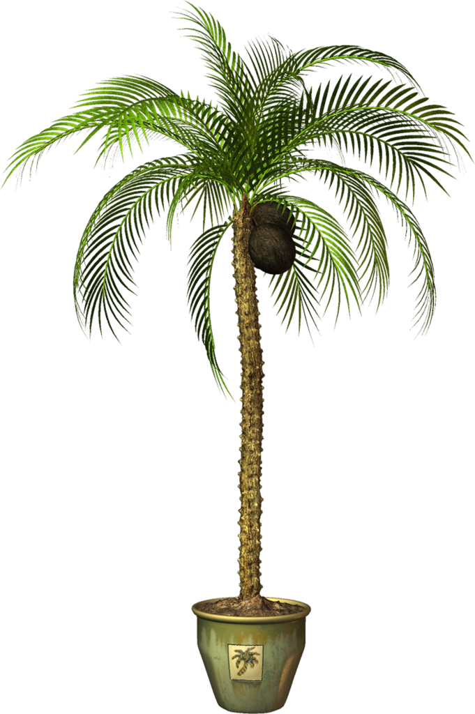 Garden pot png potted. Gardening clipart plant seedling