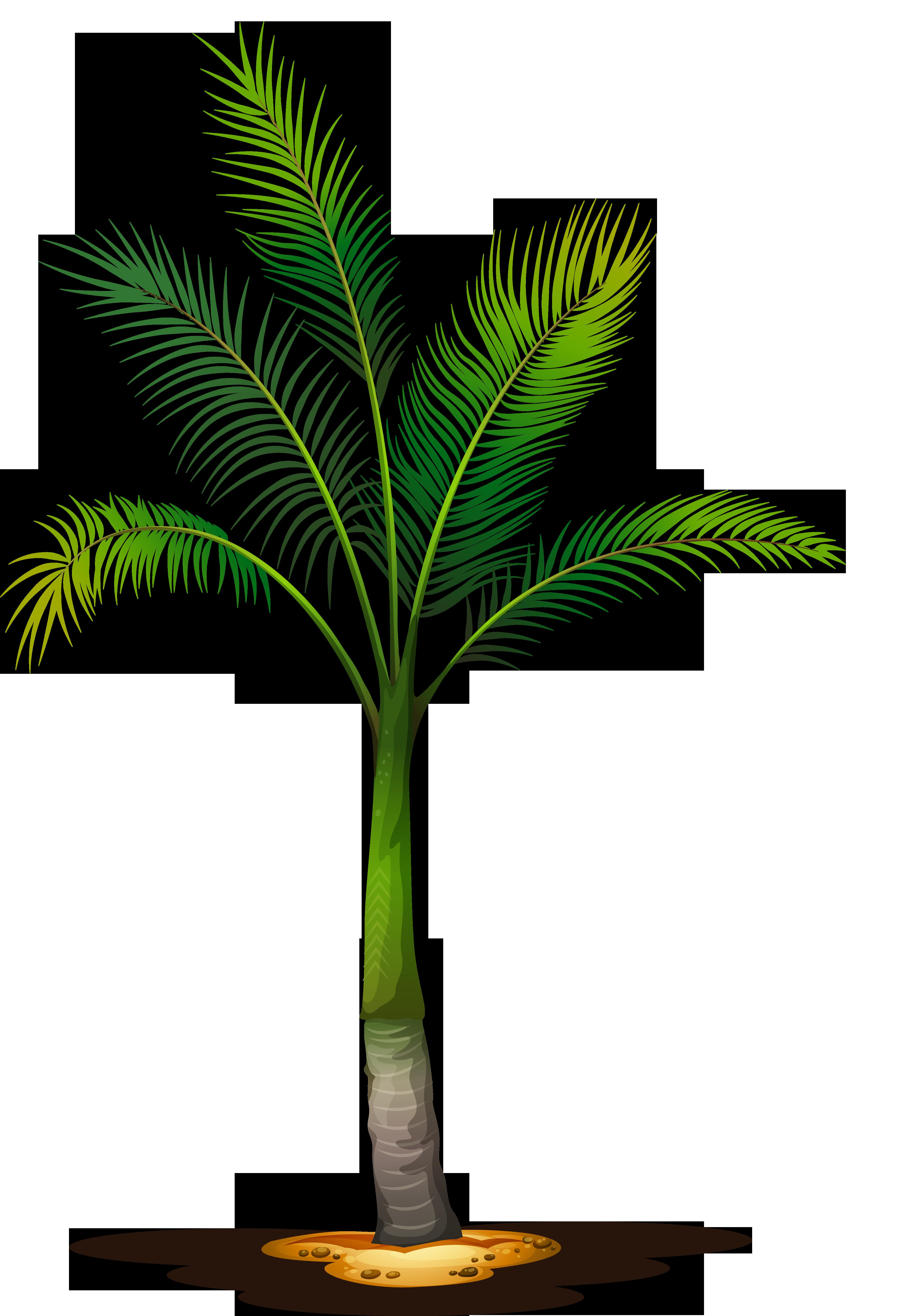 Pin by kantawat shamshoi. Gardening clipart tree plantation