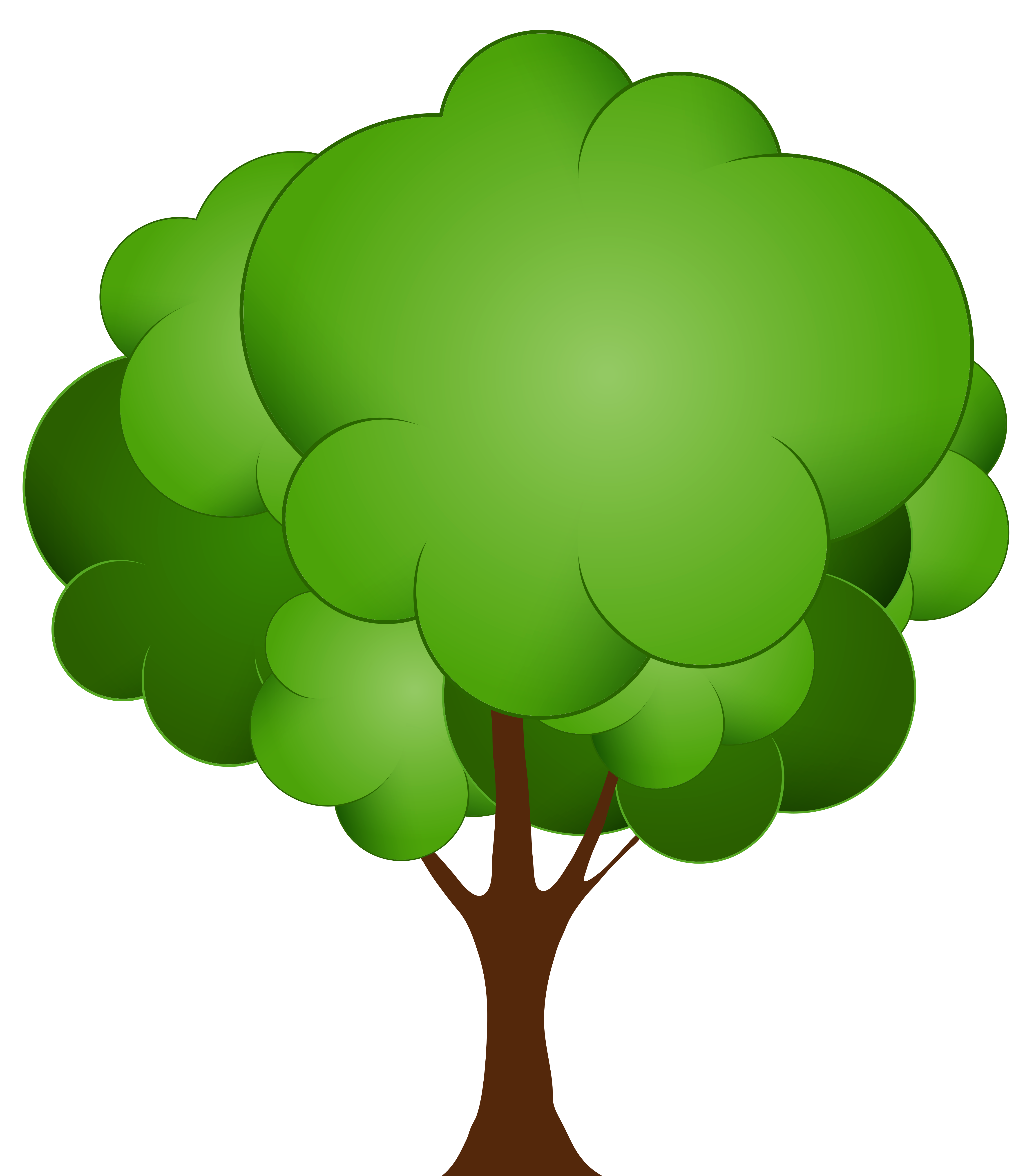 Gardening clipart tree plantation. Trees png clipartfest pics