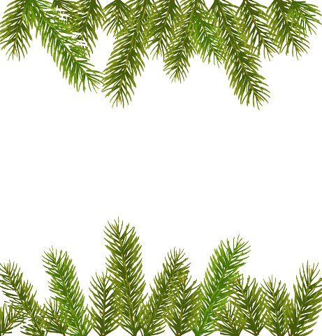 pine for free. Garland border png