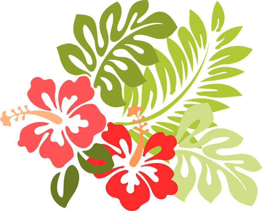 Png textures and decorations. Hibiscus clipart wedding hawaii