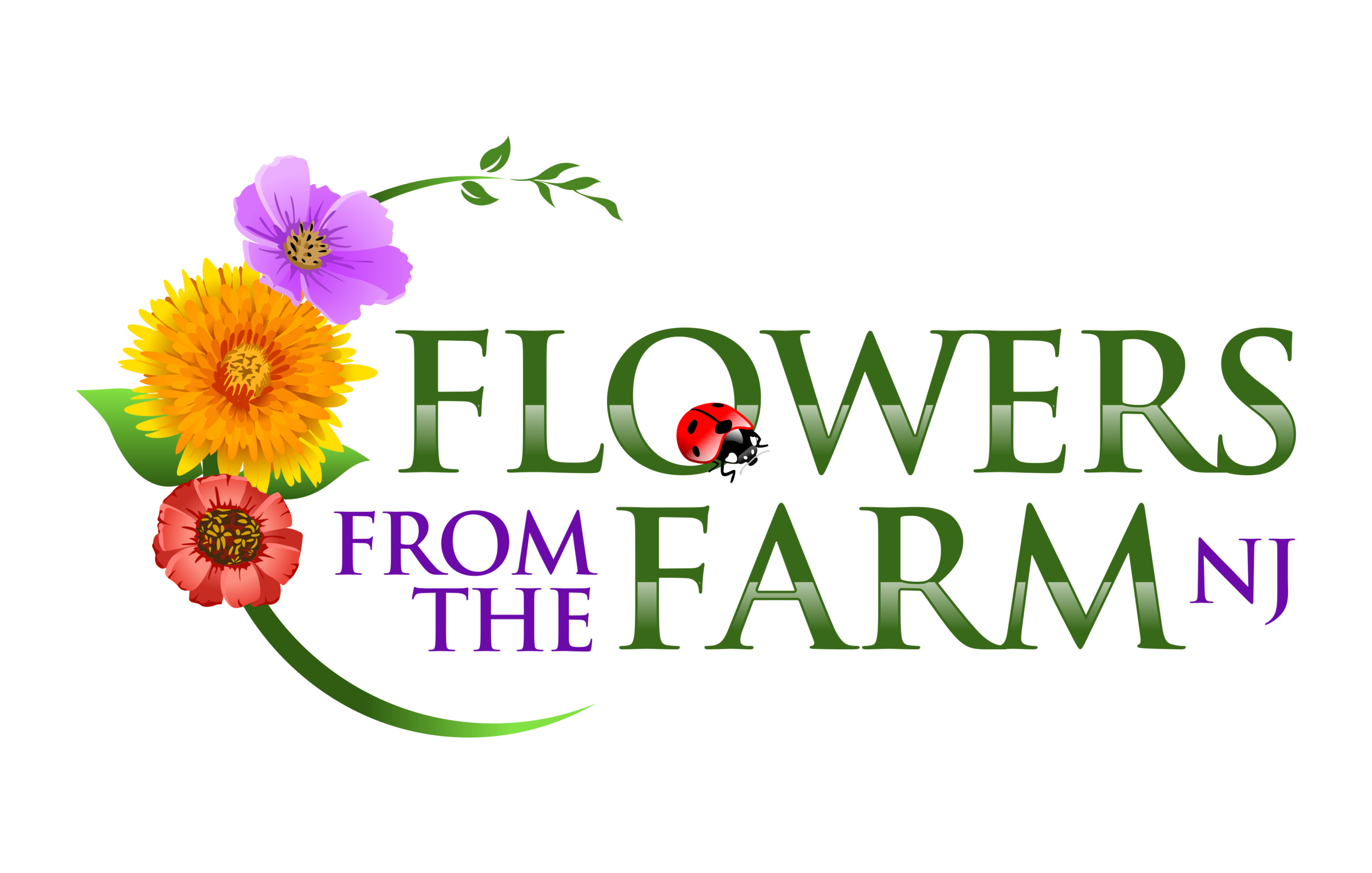 Flowers from the farm. Garland clipart marigold