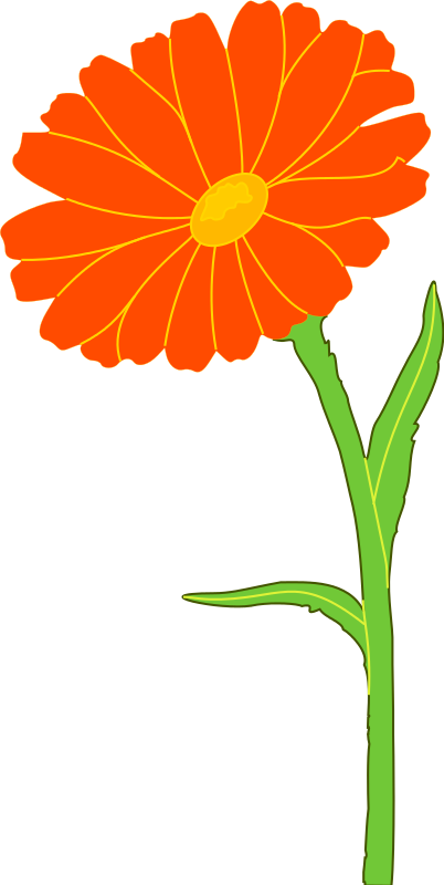 Garland clipart marigold.  collection of flower