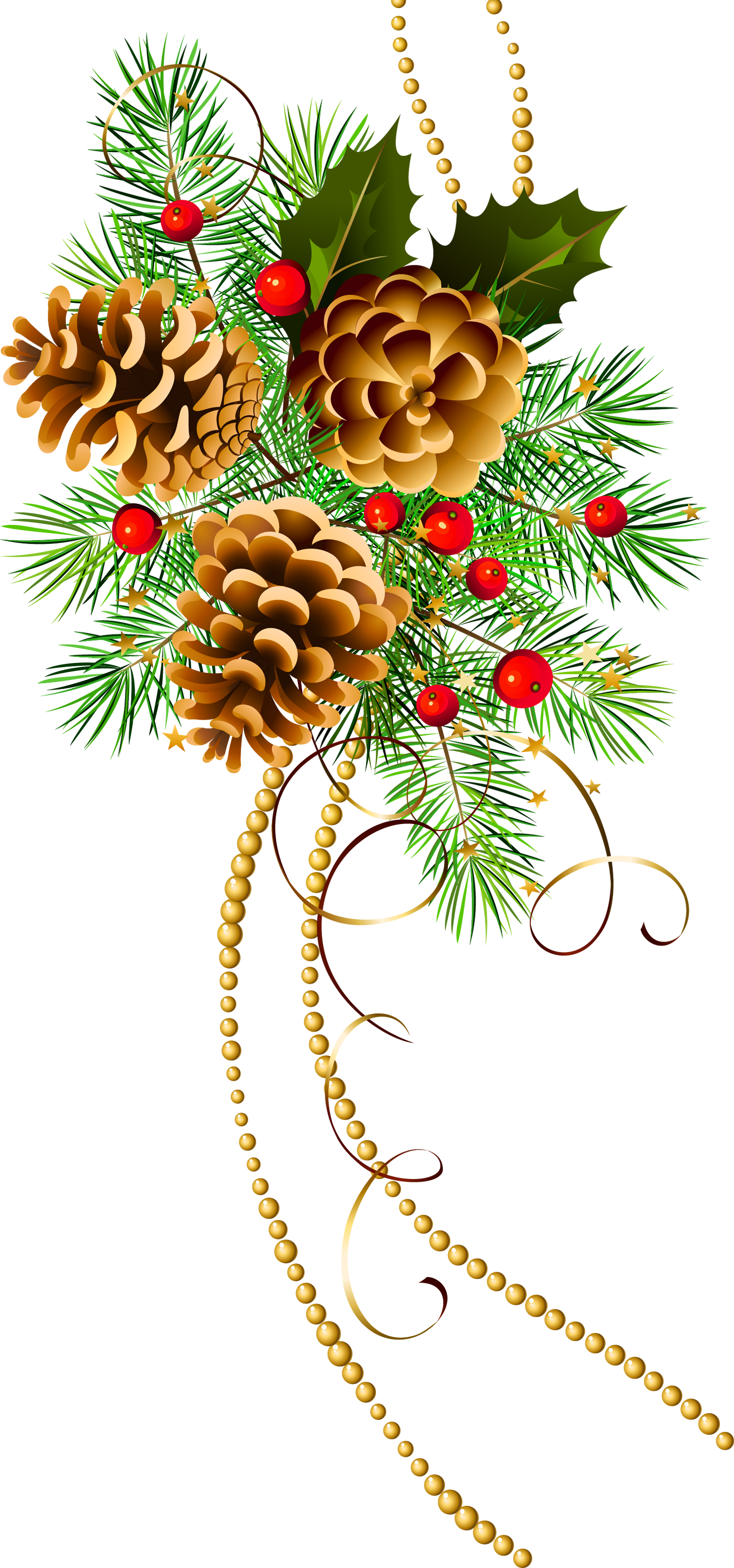Three cones with pine. Thanks clipart christmas