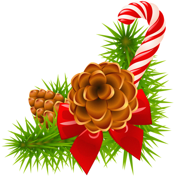 Winter clipart decoration. Christmas pine branch with