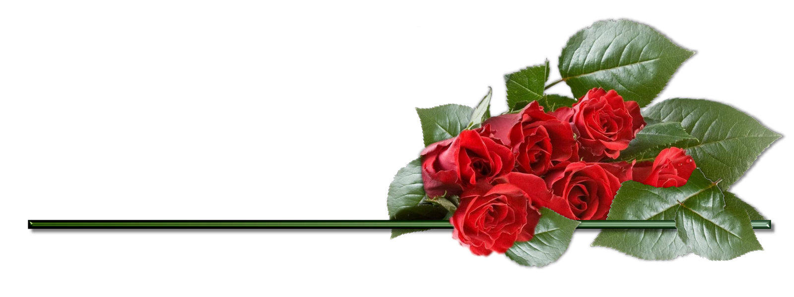 Garland clipart red rose. Divider free on dumielauxepices