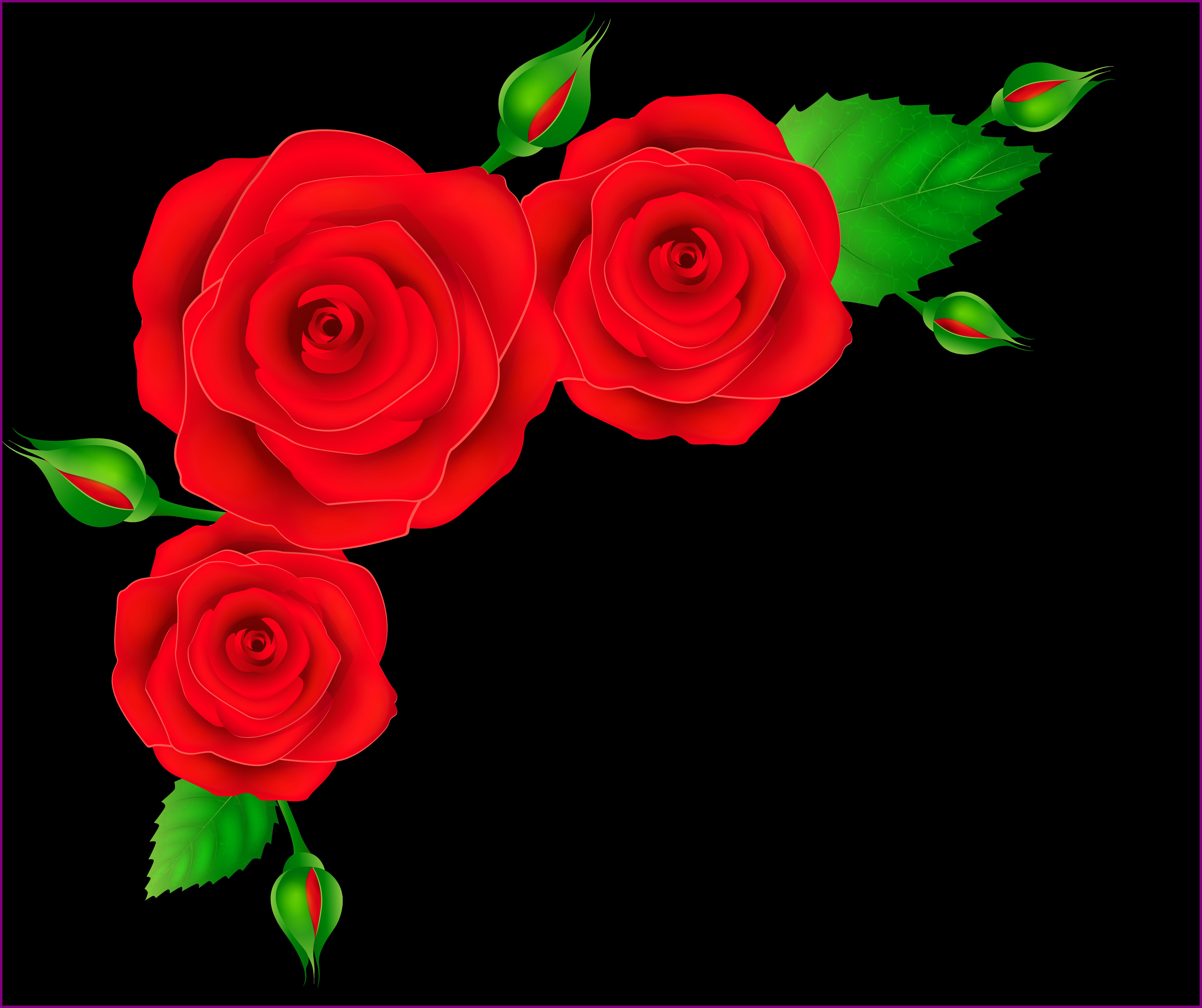 The best corner transparent. Garland clipart red rose