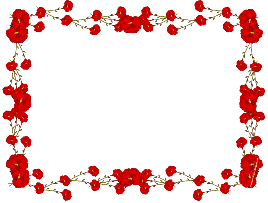 Flower frame png picture. Garland clipart red rose