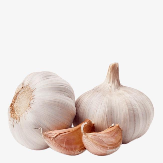 Garlic clipart. Burden food png image