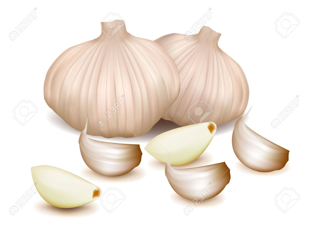Station . Garlic clipart