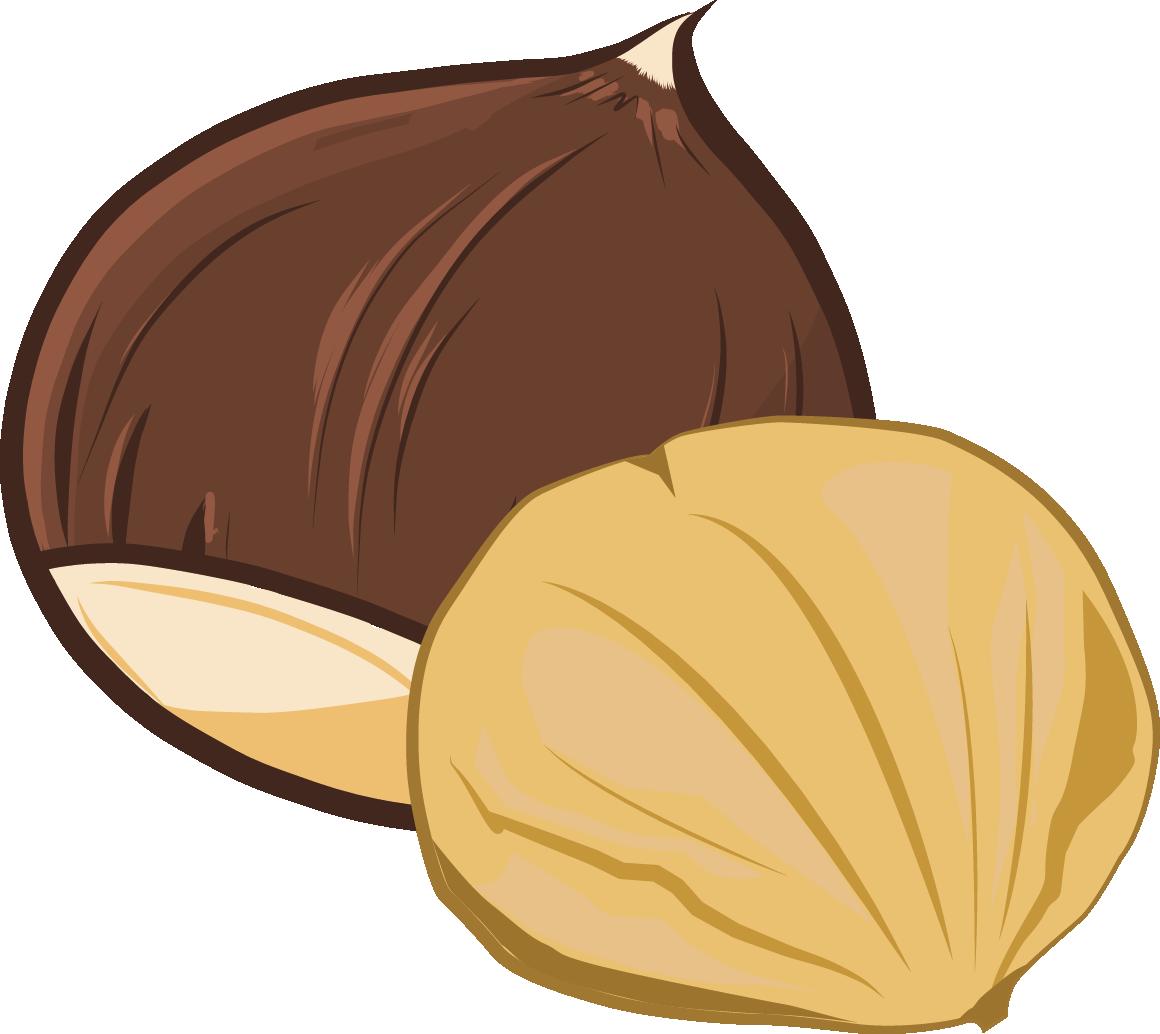 Natur food chestnuts peeled. Garlic clipart acrid
