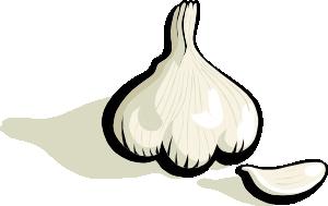 Clip art at clker. Garlic clipart draw