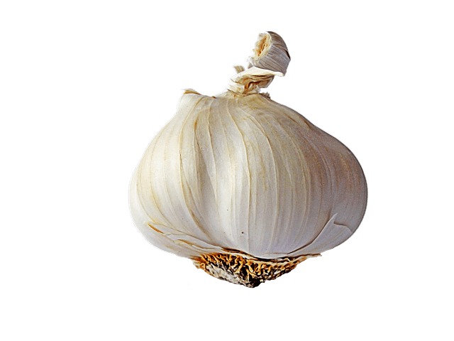 Garlic clipart garlic plant. Single transparent png stickpng