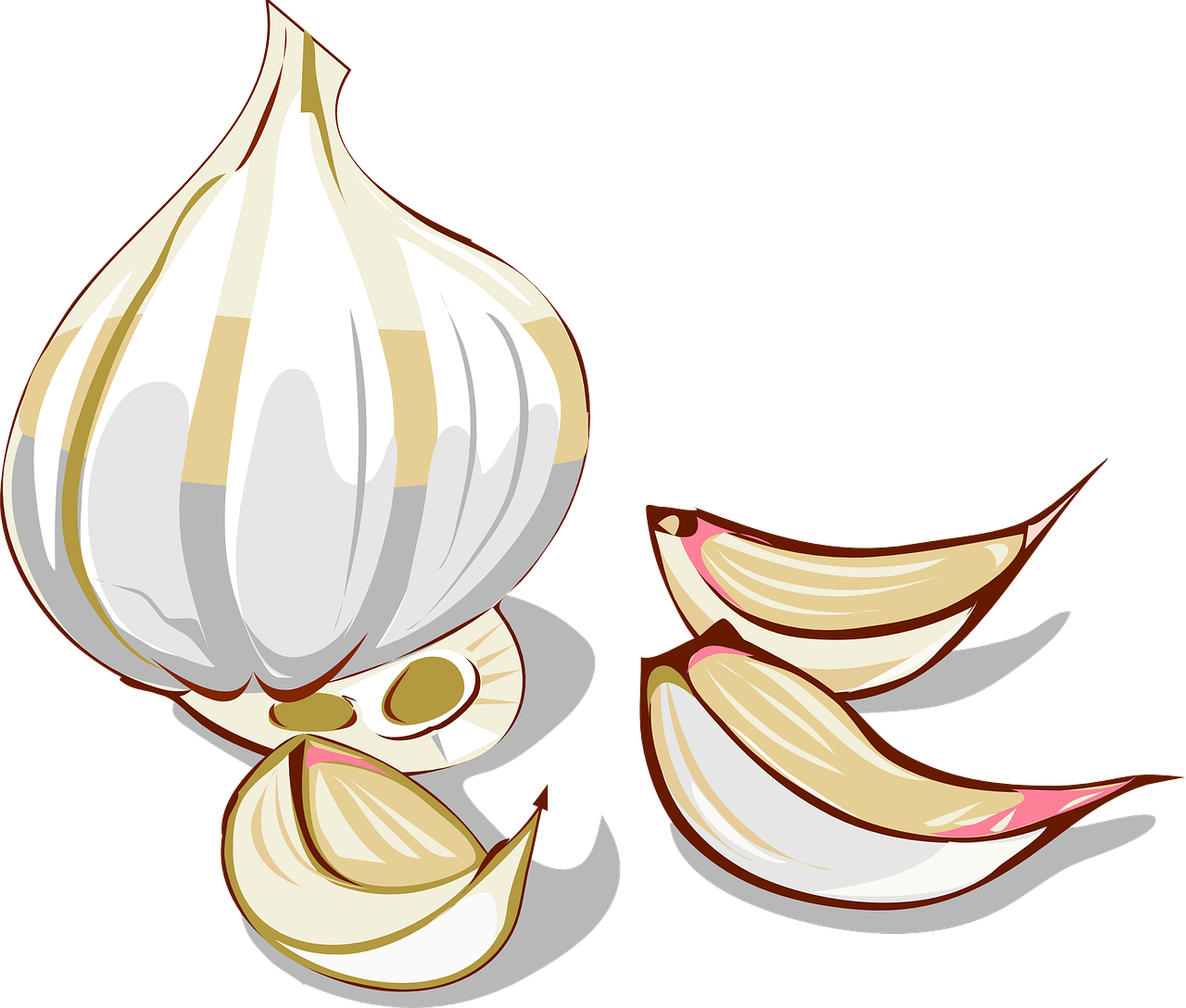 Garlic clipart ginger. Sickle cell and alkaline