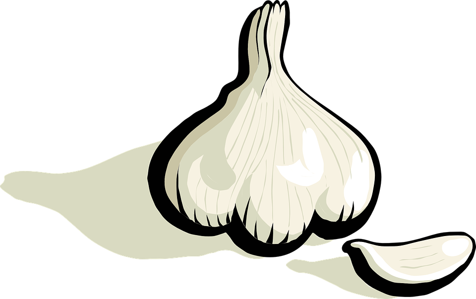 Garlic clipart ginger. Cartoon free on dumielauxepices