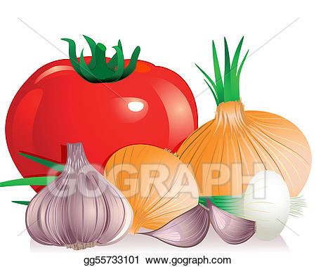 Clip art vector tomato. Garlic clipart onion garlic