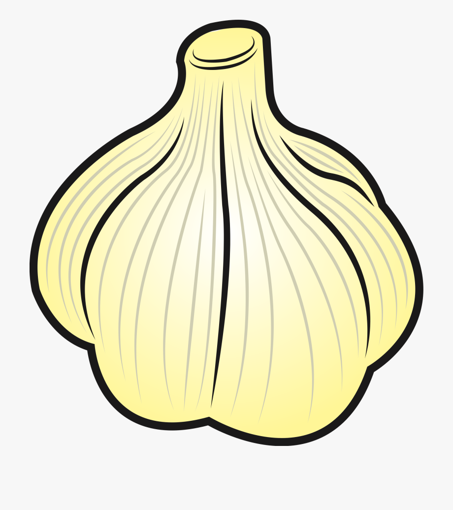 Garlic clipart onion garlic. Big image png clip