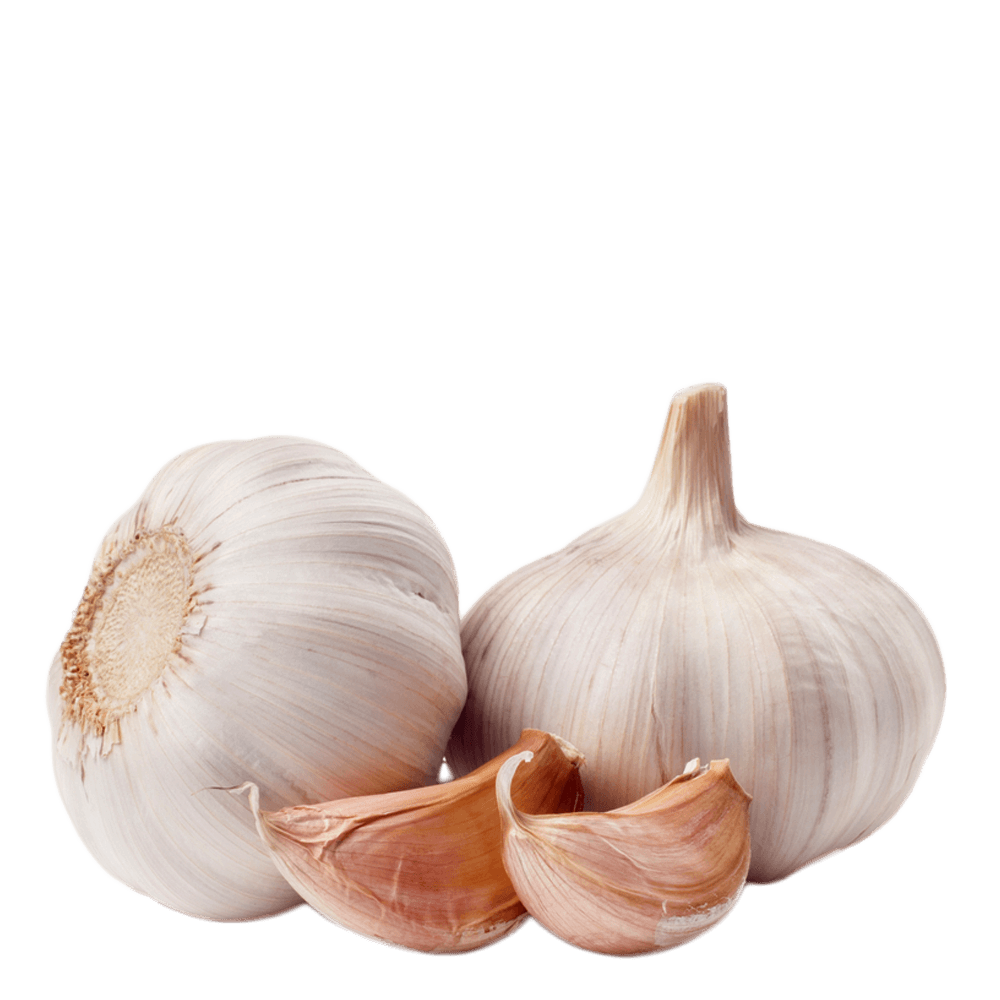Garlic clipart parsley. Transparent png images stickpng